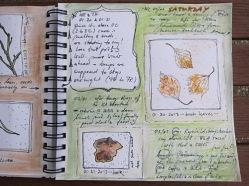 201302_week5_page2