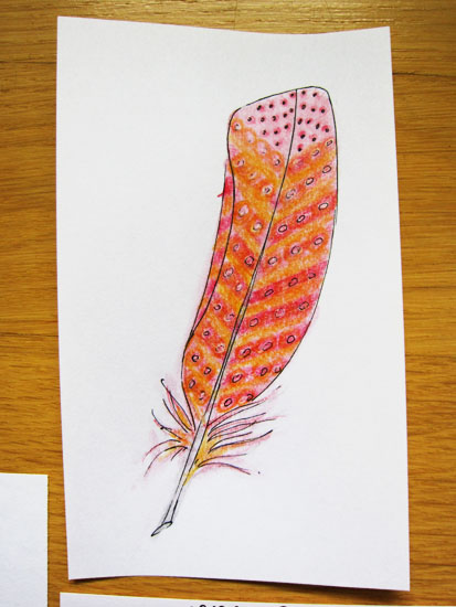 would be nice to find a feather like this